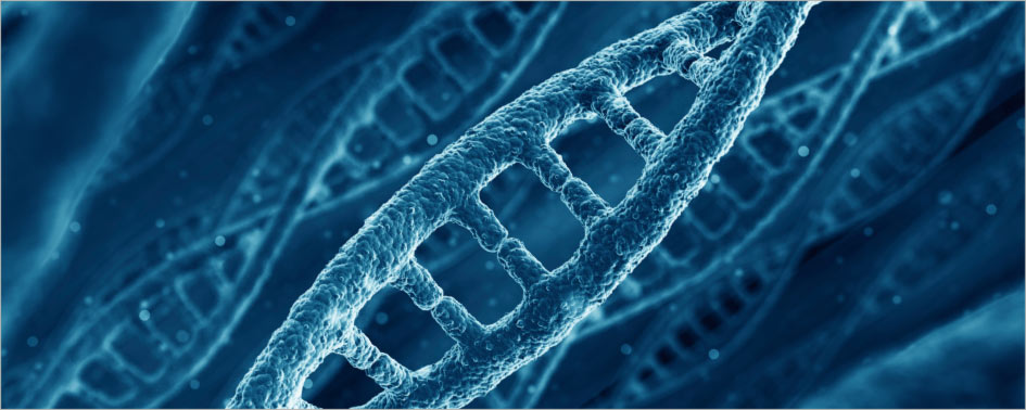 double helix: Profound Change enters the organisational DNA